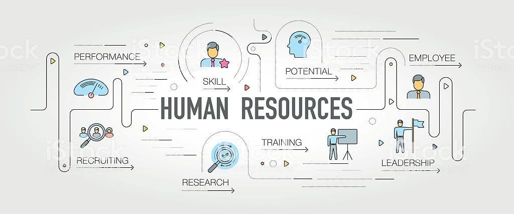 HR bisnis kecil vs HR bisnis besar